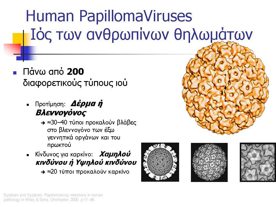 o ιός HPV